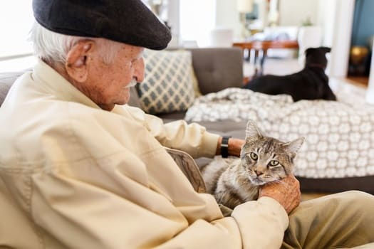 Pets Make Healthier, Happier Seniors